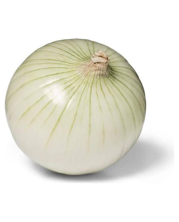 White Onion - Each
